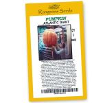 Pumpkin Atlantic Giant - Rangeview Seeds
