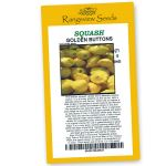 Squash Golden Buttons - Rangeview Seeds