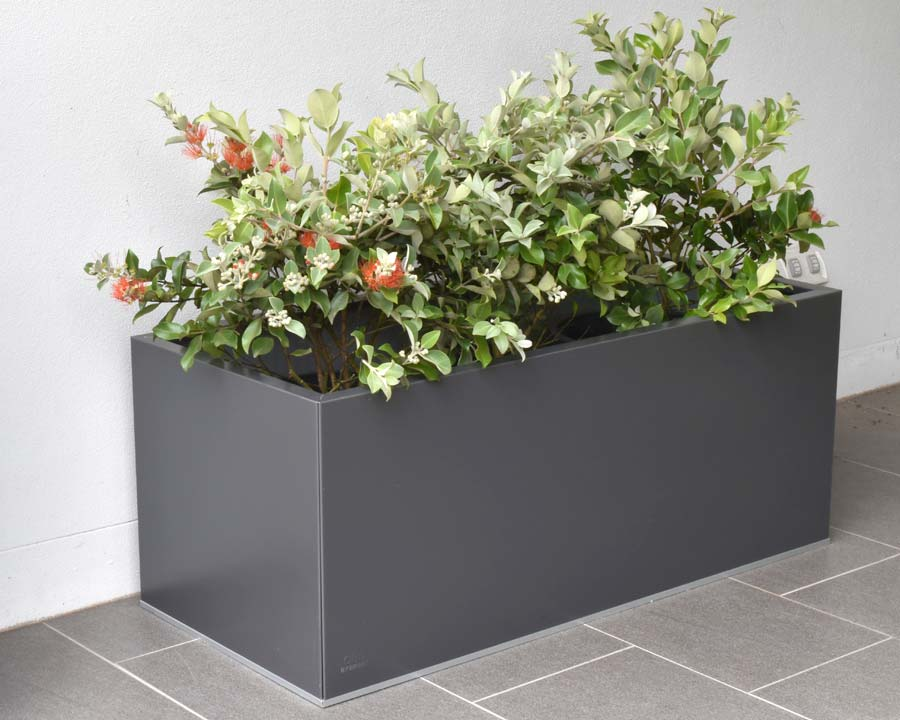 Birdies flat-packed planter 100x30x30