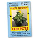 Insect Glue Traps for Pots