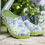 Lily Clogs - Lime