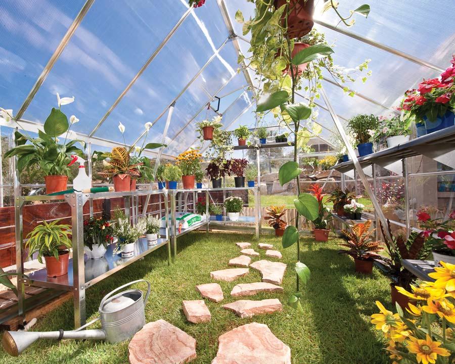 8x20 WalkIn Tall Greenhouse (244 x 607 x 229cm)