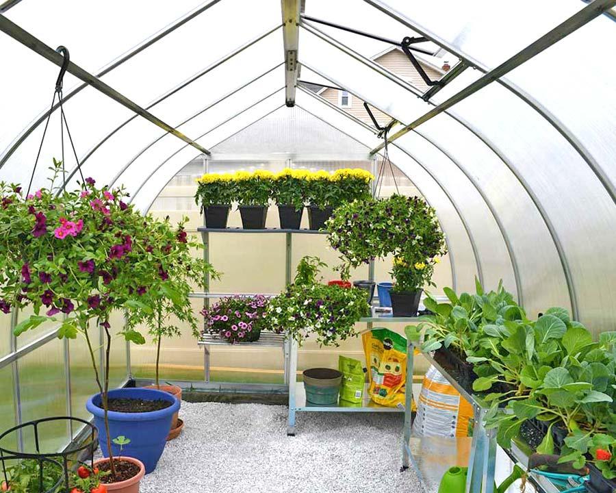 Bella 8x12 Greenhouse