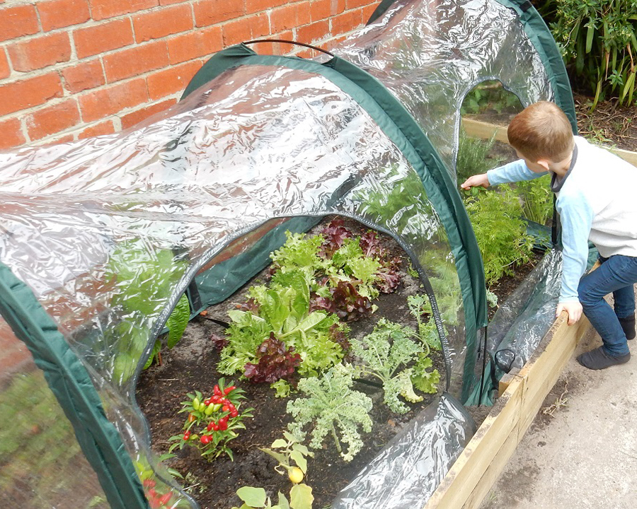 Poly Tunnel 2m