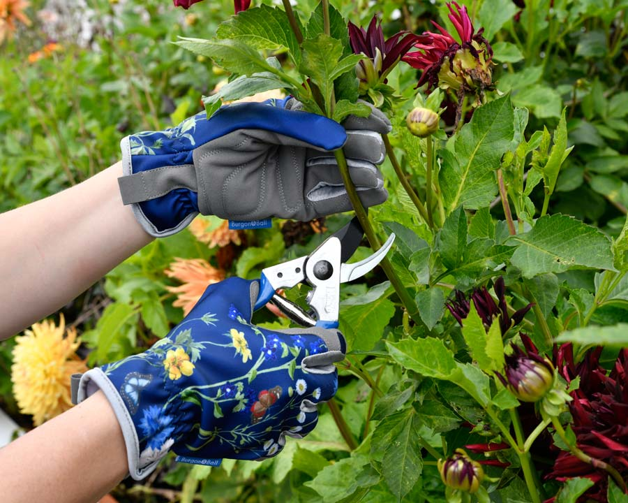 RHS Gloves - part of the Burgon and Ball British Meadow range of garden tools and accessories