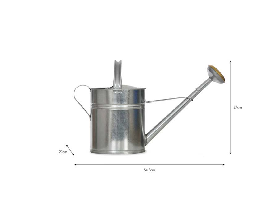 Dimensions of 10l Galvanised Watering Can by Garden Trading