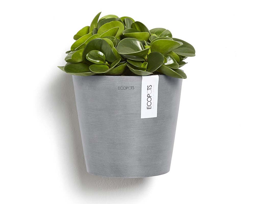 Amsterdam Wall Mounted Pot - in Blue Grey