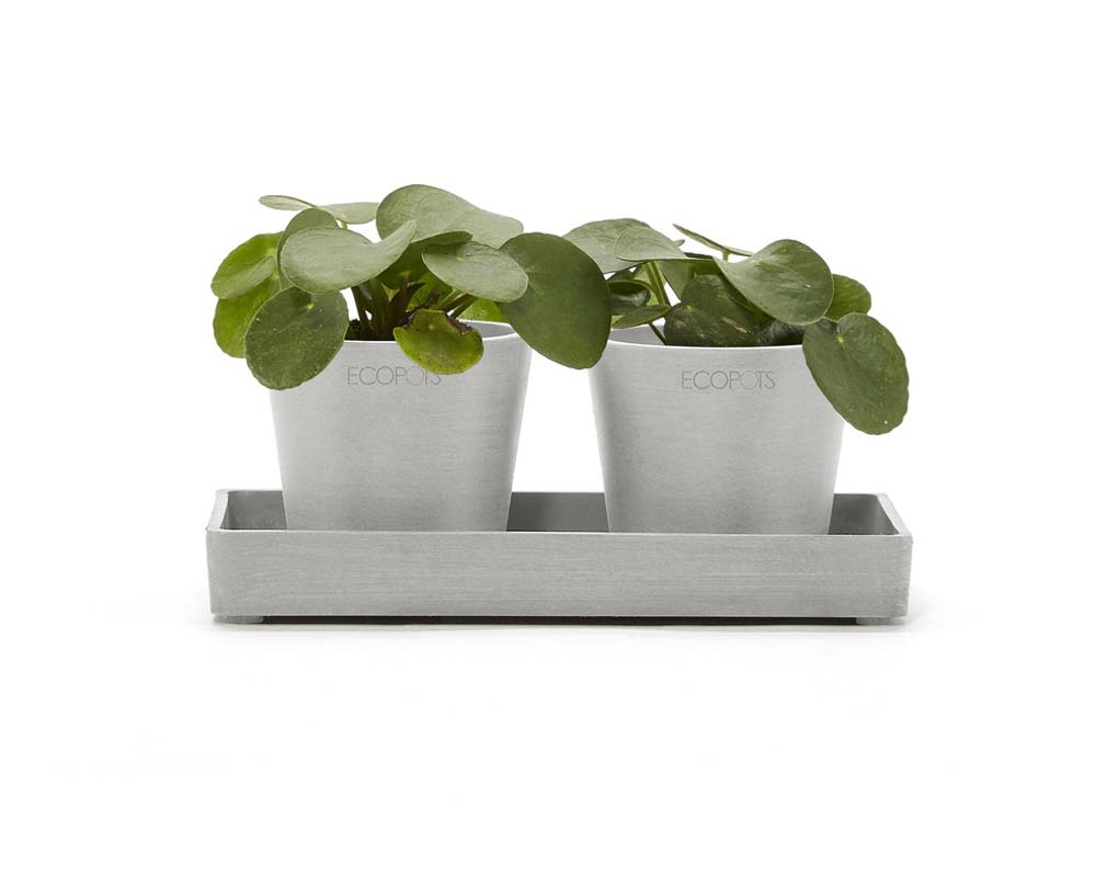 White Grey - Amsterdam Display Platter - 20cm and 25cm - EcoPots