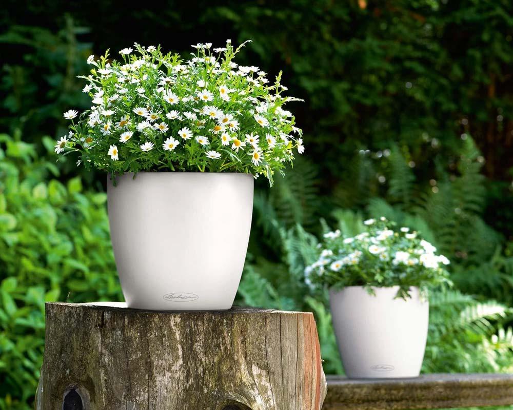 White - Classico Color 28 - Self-Watering Pot - Lechuza