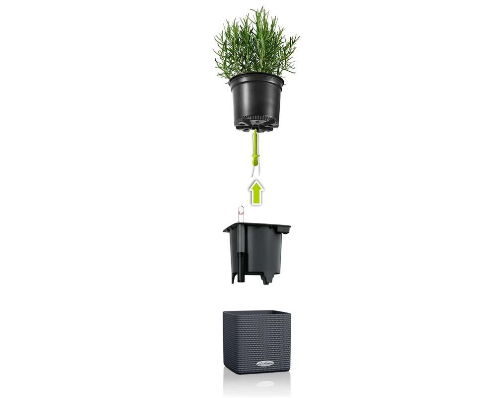 Puro Cube Color 14 - Self-Watering Pot - Lechuza