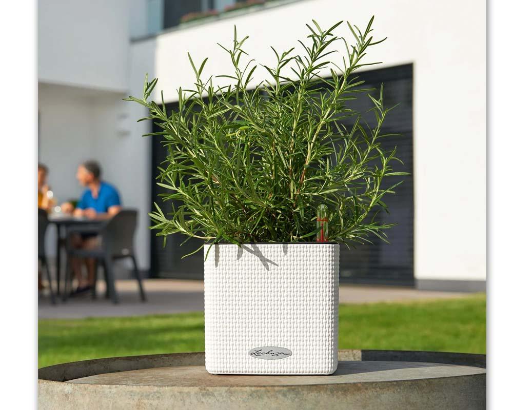 White - Puro Cube Color 14 - Self-Watering Pot - Lechuza