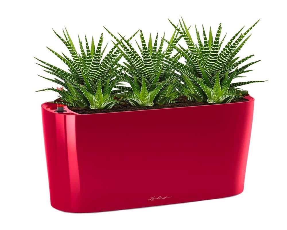 High Gloss Scarlett Red - Delta 20 Self-Watering Pot - Lechuza