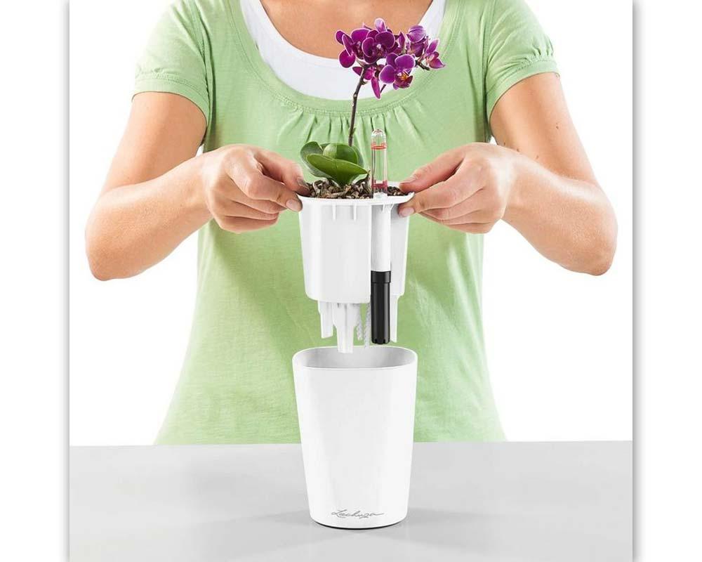 Assembly - Mini Deltini - Self-Watering Pot - Lechuza