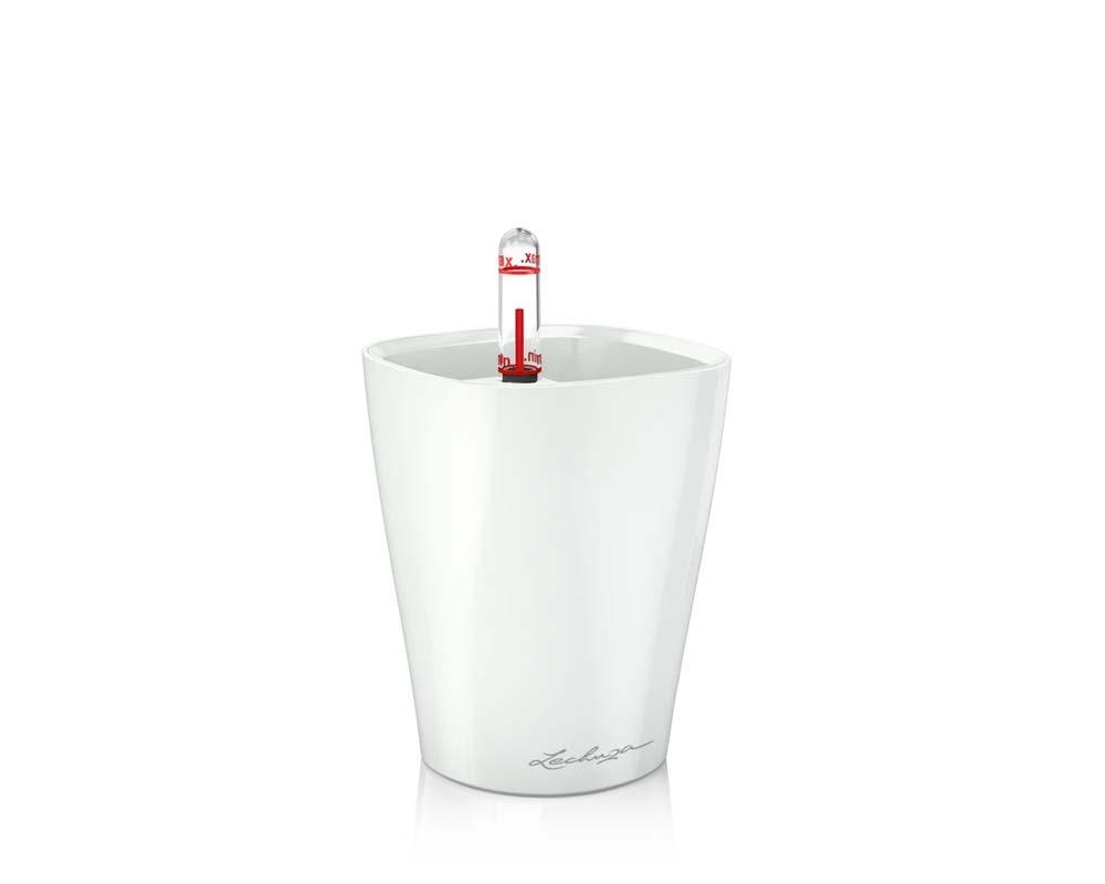 High Gloss White - Mini Deltini - Self-Watering Pot - Lechuza