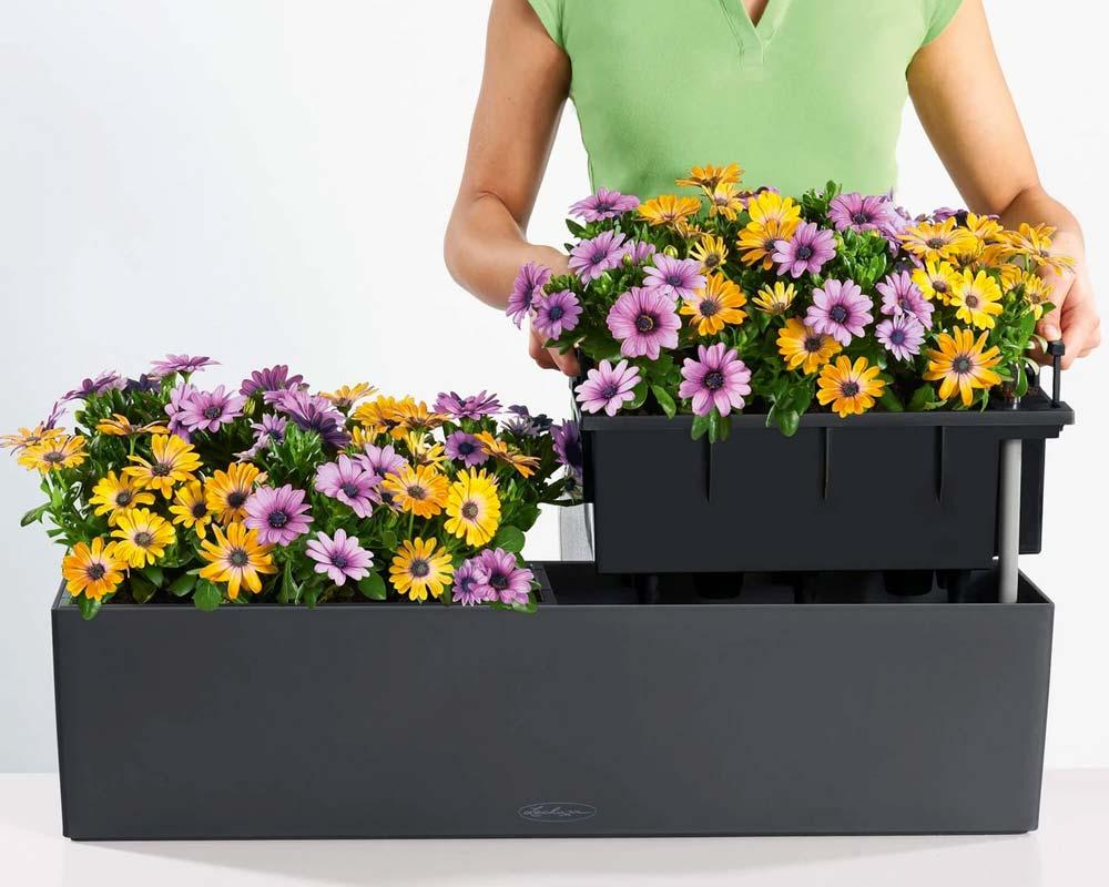 Assembly - Balconera Color 80 - Self-Watering Planter - Lechuza