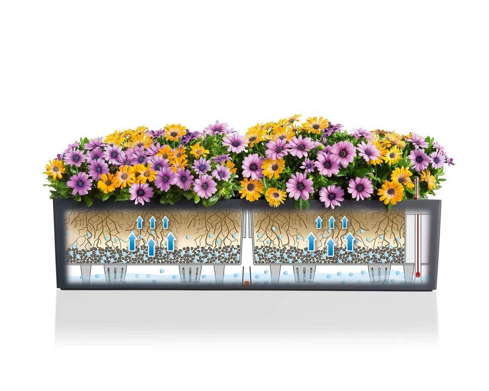 Diagram - Balconera Color 80 - Self-Watering Planter - Lechuza