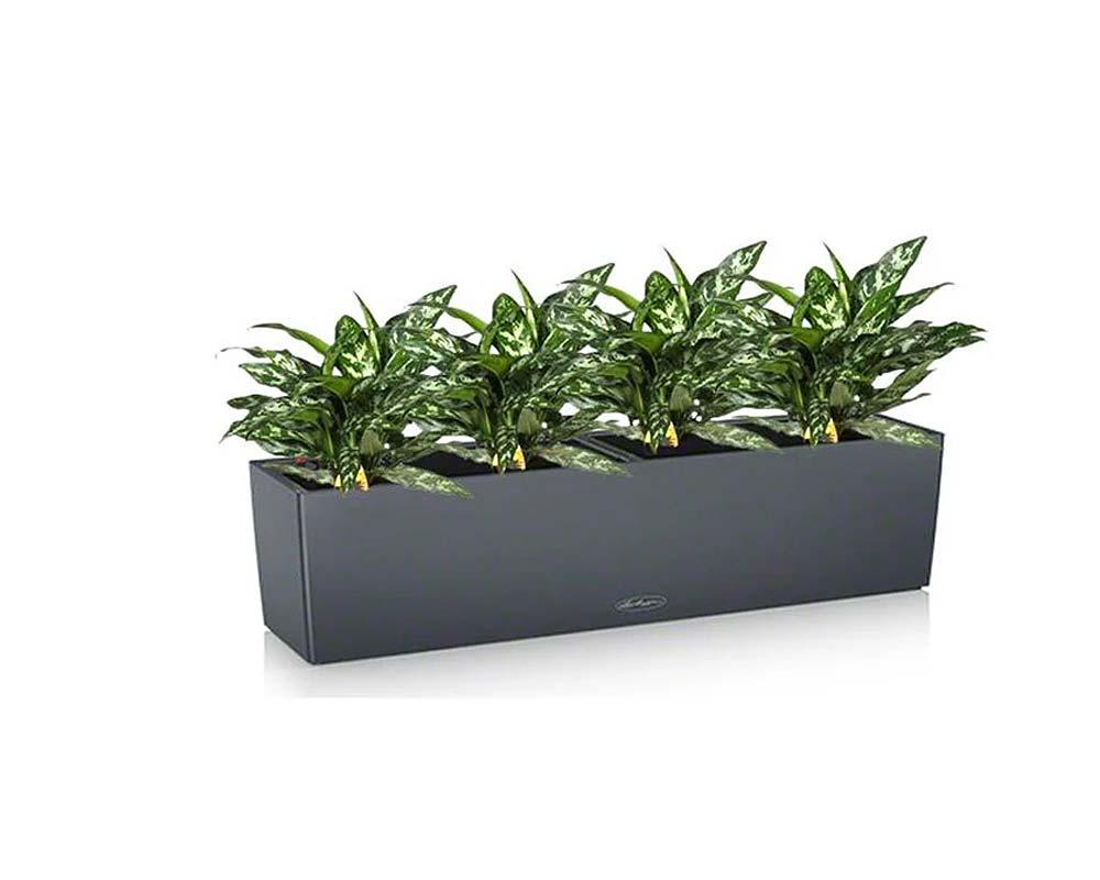 Slate - Balconera Color 80 - Self-Watering Planter - Lechuza