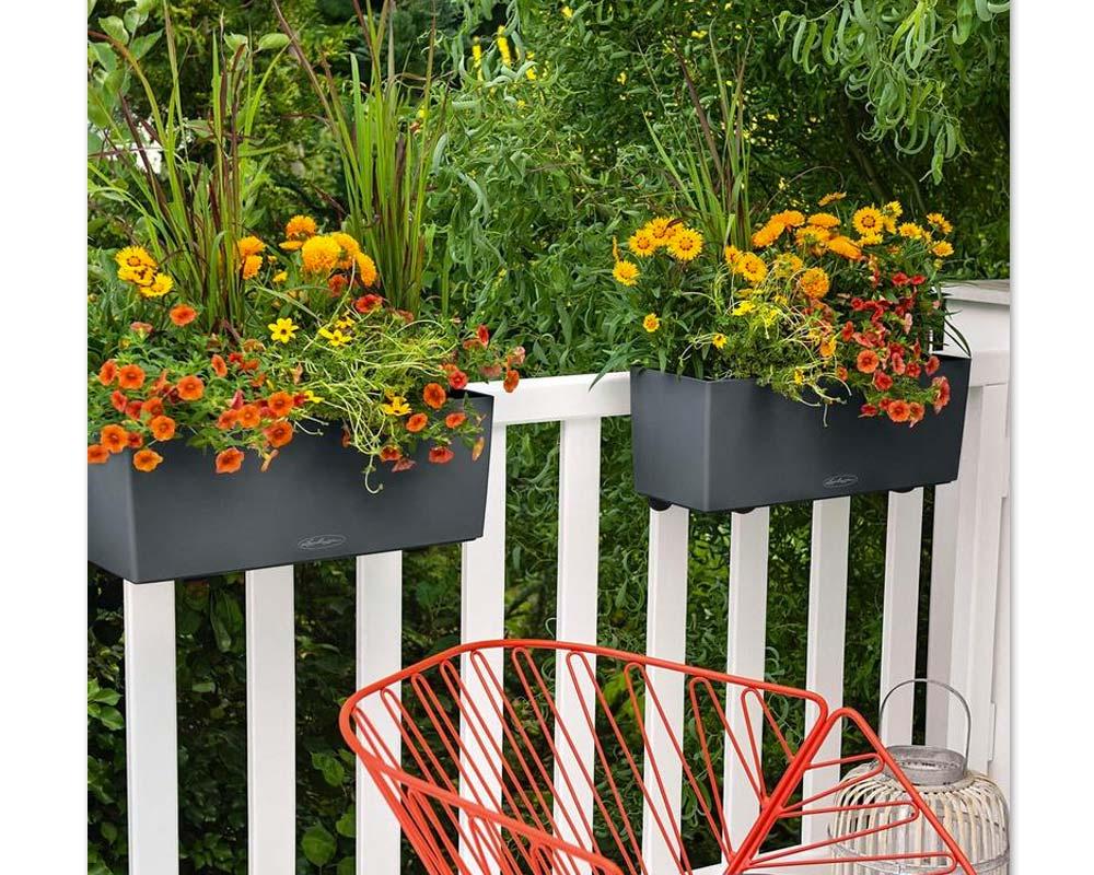 Displayed using Balconera Brackets - Balconera Color 50 - Self-Watering Planters - Lechuza