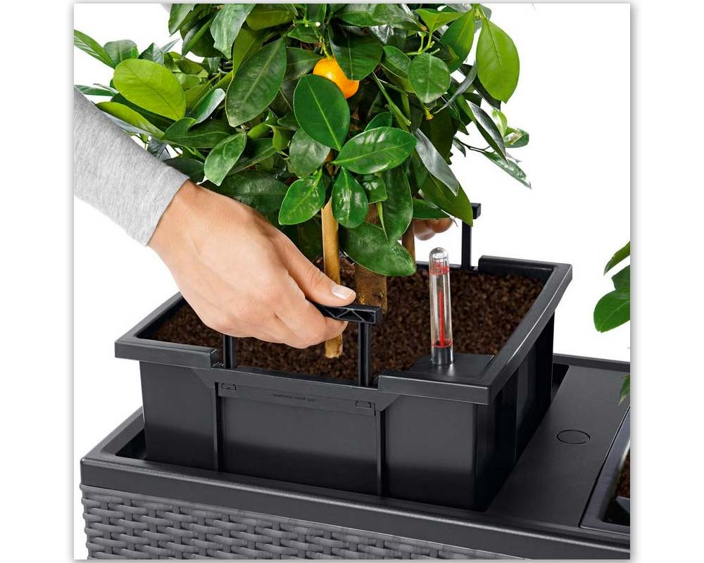 Assembly -Trio Cottage 40 - Self-Watering Planter - Lechuza