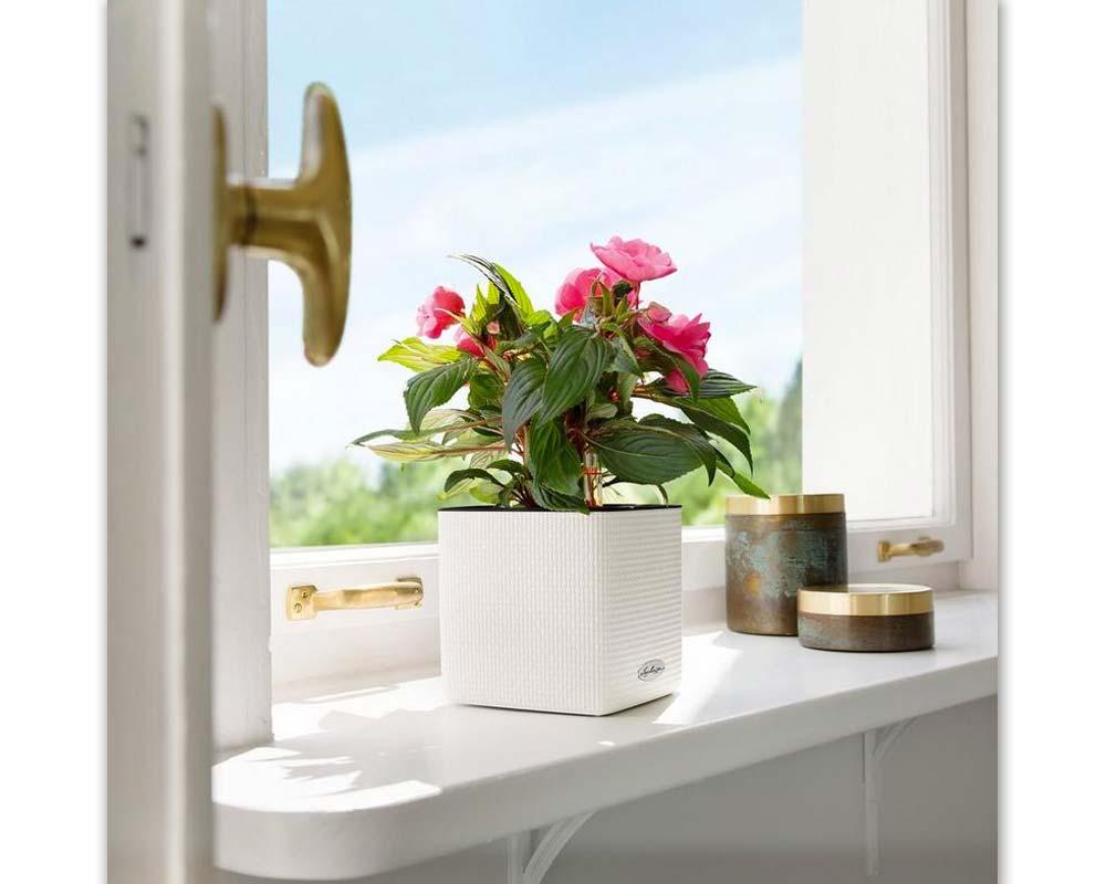 Puro Cube Color 16 - Self-Watering Pot - Lechuza