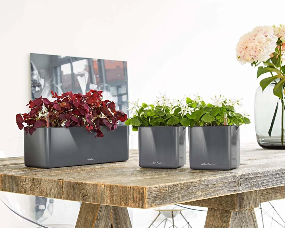 High Gloss Charcoal - Glossy Cube Triple - Self-Watering Pot - Lechuza