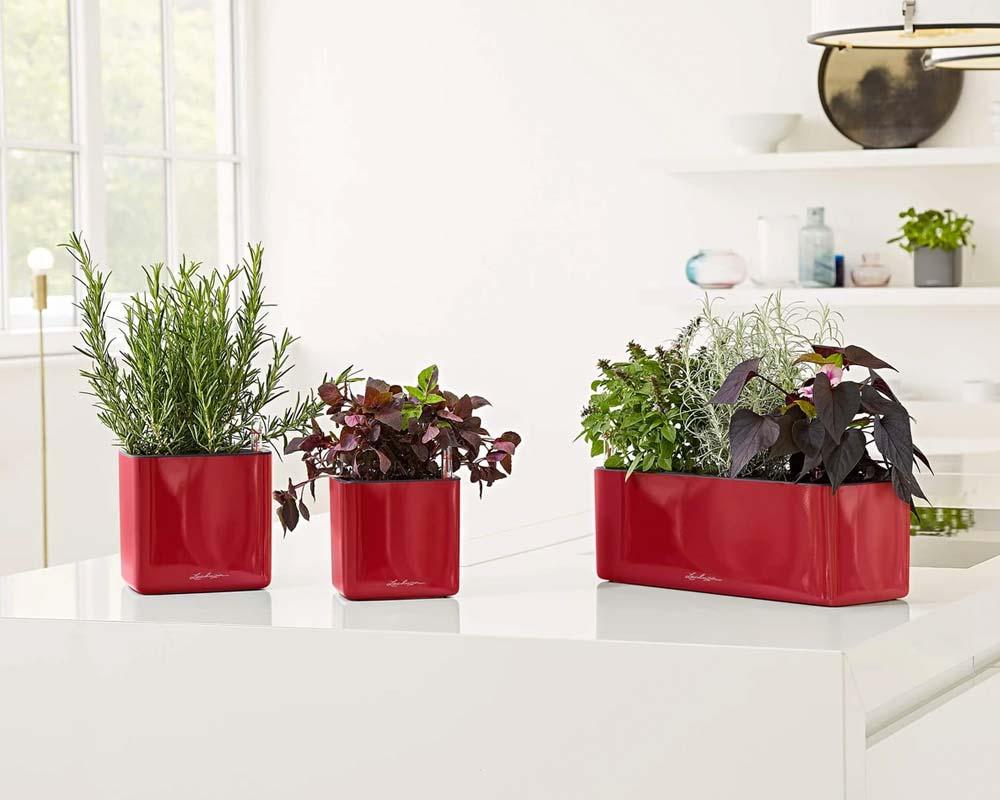 High Gloss Scarlett Red - Glossy Cube Triple - Self-Watering Pot - Lechuza