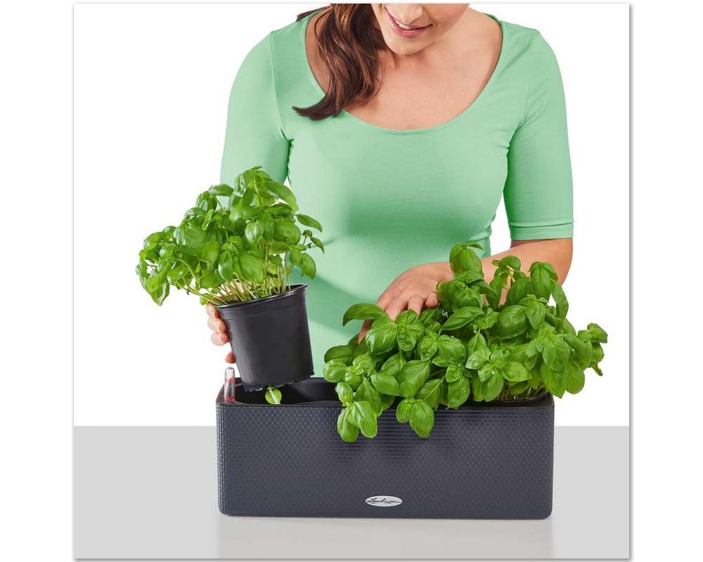Assembly - Puro Cube Color Triple - Self-Watering Pot - Lechuza