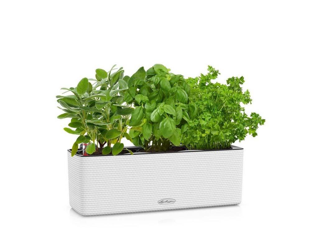 White - Puro Cube Color Triple - Self-Watering Pot - Lechuza