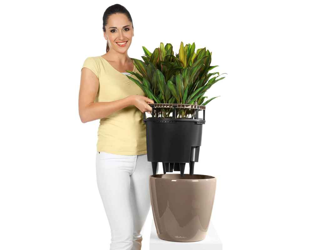 Classico LS 21 Premium Self-Watering Pot - Easily Removed for Gardening - Lechuza