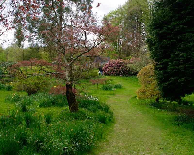 Ramster gardens gardensonline - What time does victoria gardens open ...