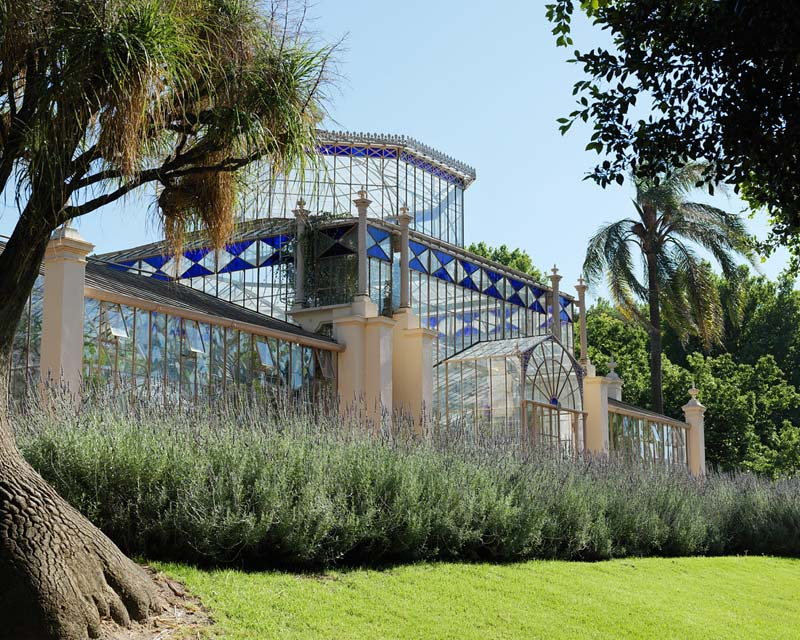 The Palm House - photo supplied by Adelaide Botanic Garden