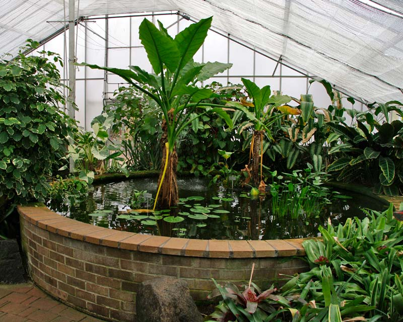 how to get to wollongong botanical gardens