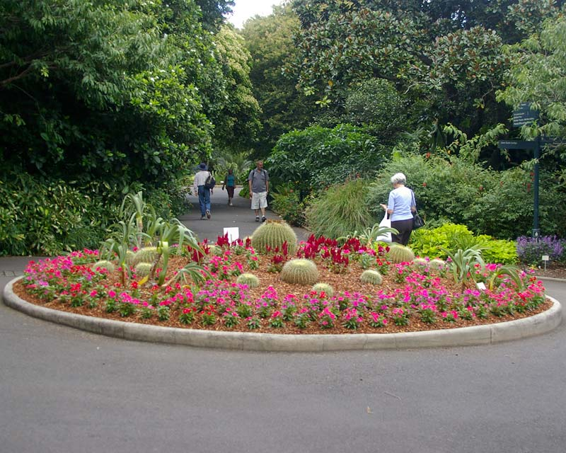 Plantings at Sydney Botanic Gardens are often rather imaginative, this space is different on every visit.