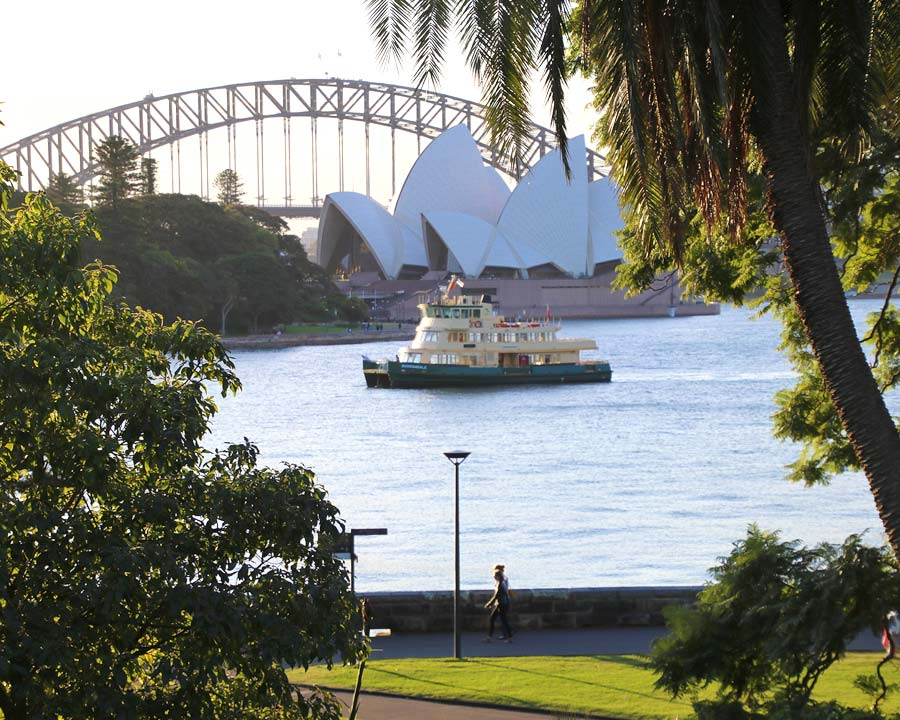 View across harbour from Sydney Royal Botanic Gardens