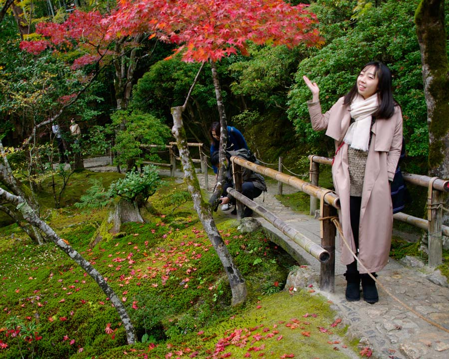 Gingkakuji - the Silver Pavillion and Gardens, Kyoto.  The act of 'Momiji' adoring the autumn colours.