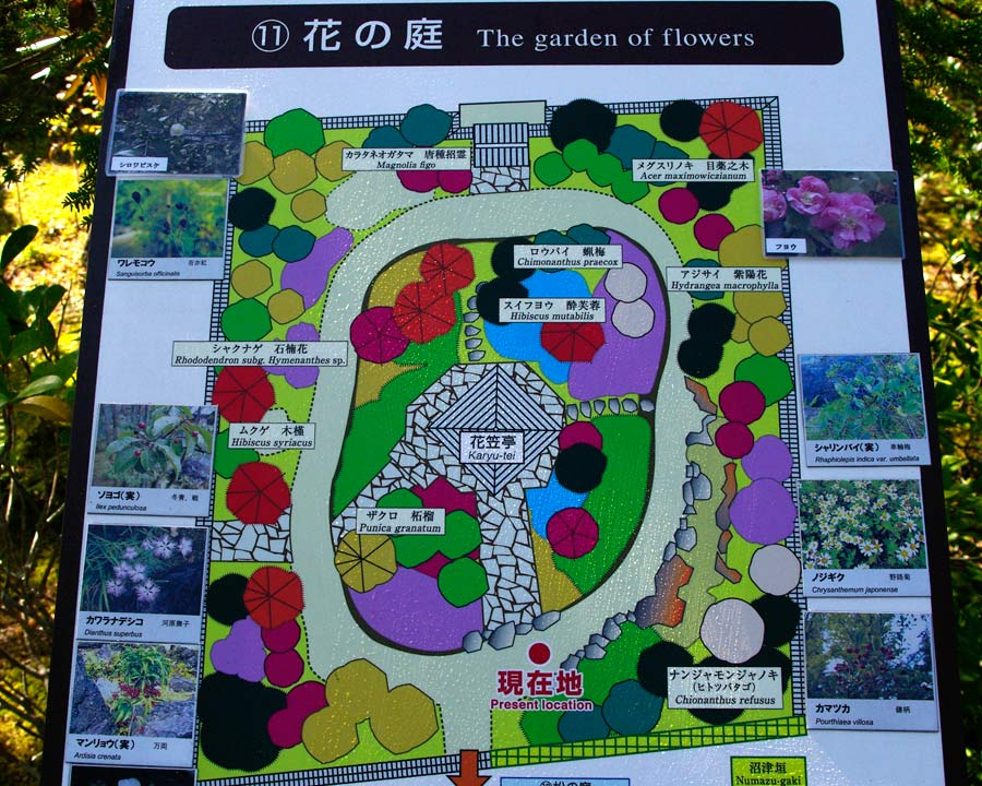 Hemiji Koko-en, Garden of Nine Rooms - Room 7 The Garden of Flowers - maps of garden show plantings very clearly