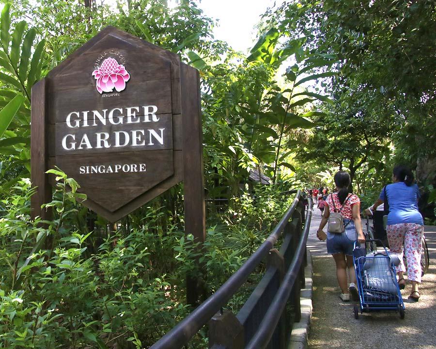 Singapore Botanic Gardens Ginger Garden