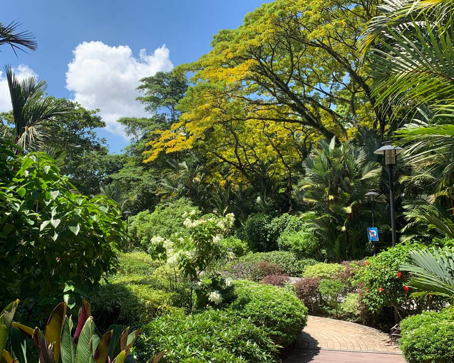 Singapore Botanic Gardens - Path to Healing Garden