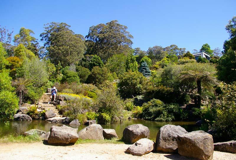 The lake - Blue Mountains Botanic Garden Mount Tomah