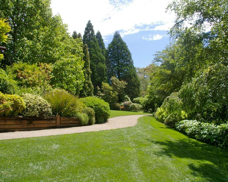 Enjoy a leisurely stroll - Blue Mountains Botanic Garden Mount Tomah