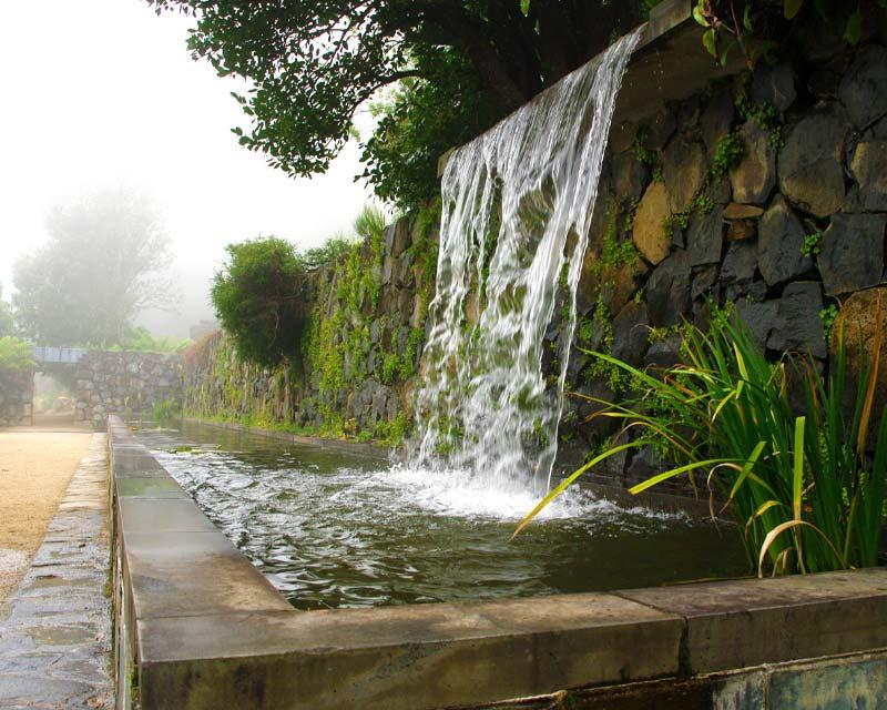 Waterfall - misty morning - Blue Mountains Botanic Garden Mount Tomah