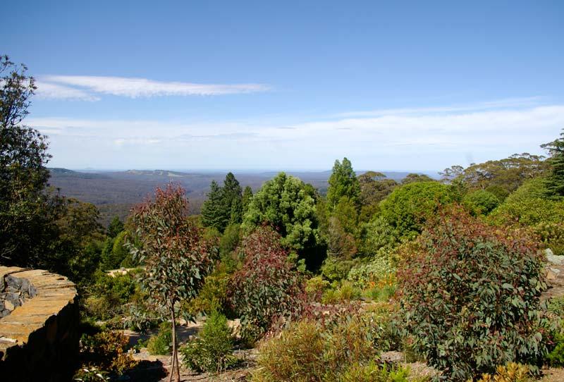 Views over Blue Mountains Botanic Garden Mount Tomah