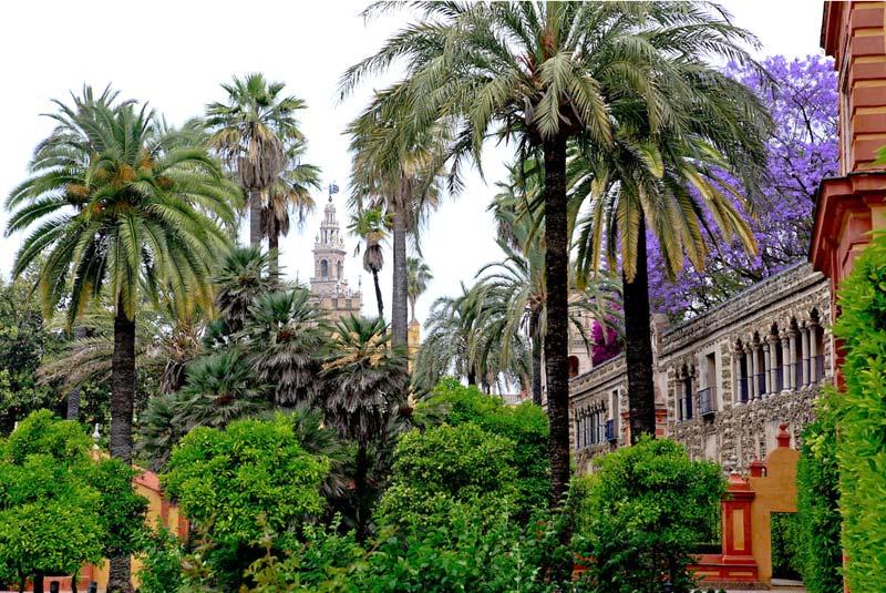 Jardines de las reales alcazares gardensonline - Jardines verticales sevilla ...