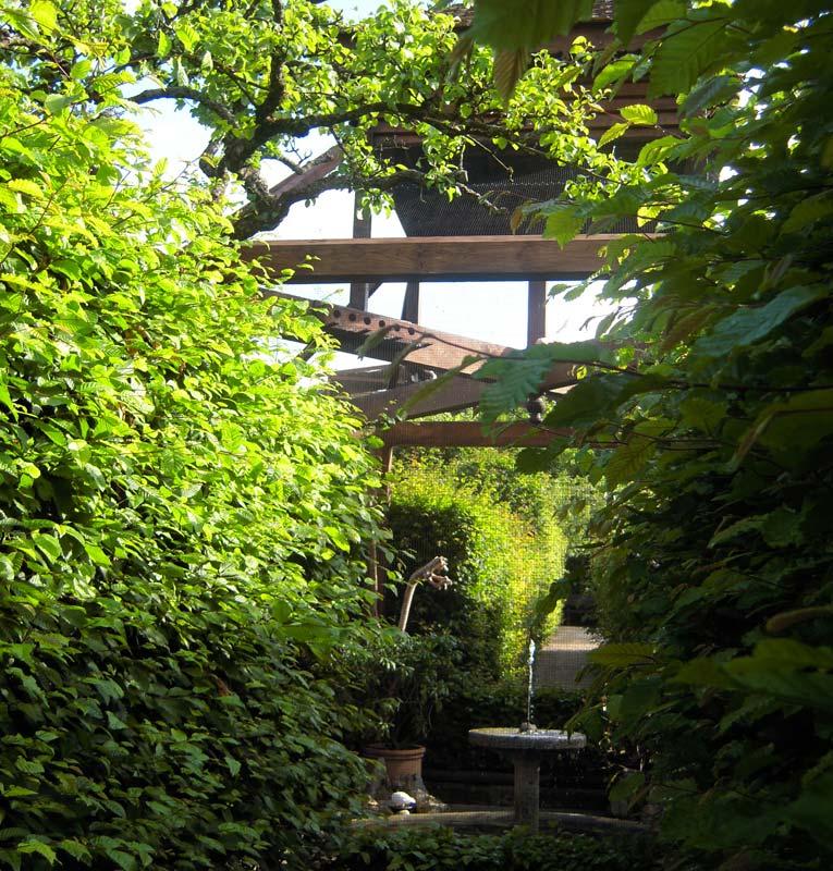 Gardensonline jardin des cinq sens garden of the five for Jardin 5 sens guadeloupe