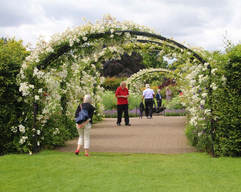 Archway through to the Rose Garden - Wisley