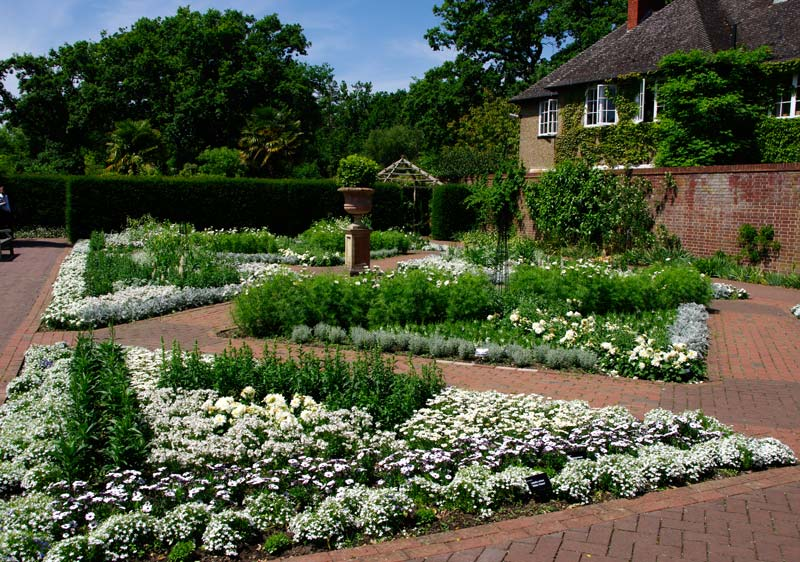 Wisley Garden - The White Garden - white varieties include  Nemesia, Verbena, Lantana, Lobelia and Argyranthemum