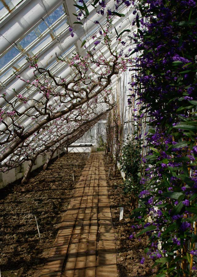 The Peach House, Lost Gardens of Heligan