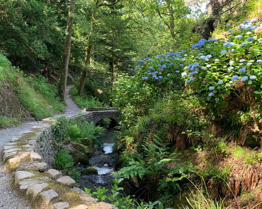 Bodnant Gardens, Conwy, North Wales - Woodland paths