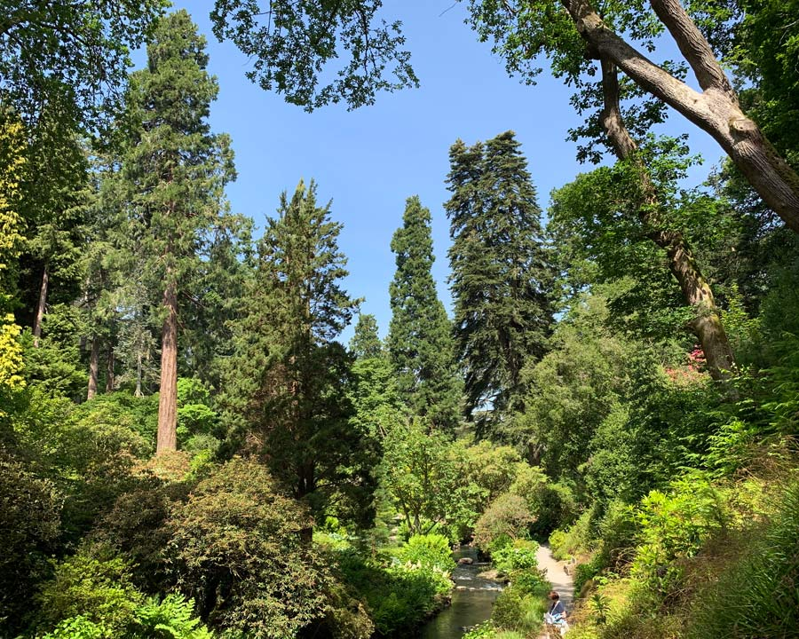 Bodnant Gardens, Conwy, North Wales - Stream Walk