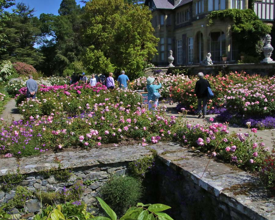The Rose Garden at Bodnant Gardens